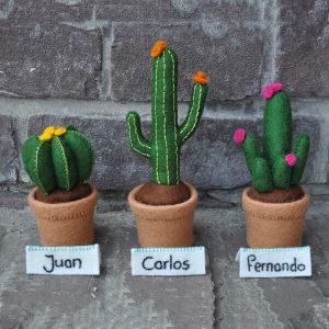 Cactus viltpakket Juan, Carlos & Fernando